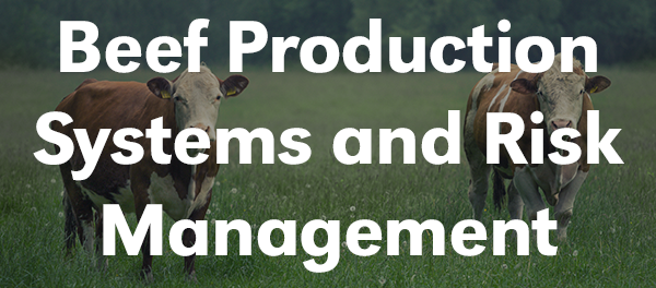 Beef Production Systems and Risk Management